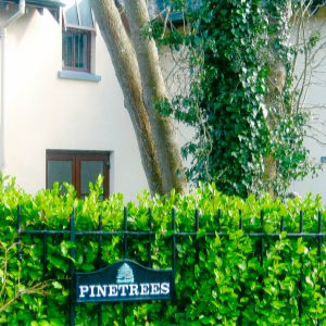 Pinetrees – New Development – 5 dwellings & 11 Apartments & 11 Townhouses